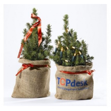 Mini kerstboom - Topgiving