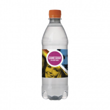 Bronwater recycled pet 500 ml met draaidop - Topgiving