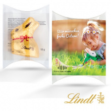 Lindt transparent cushion - Topgiving