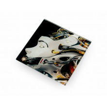 Sublimation glass coaster - Premiumgids